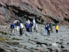 joggins-fossil-cliffs-group
