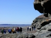 joggins-fossil-cliffs-group1