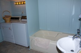 Ensuite Bathroom with laundry
