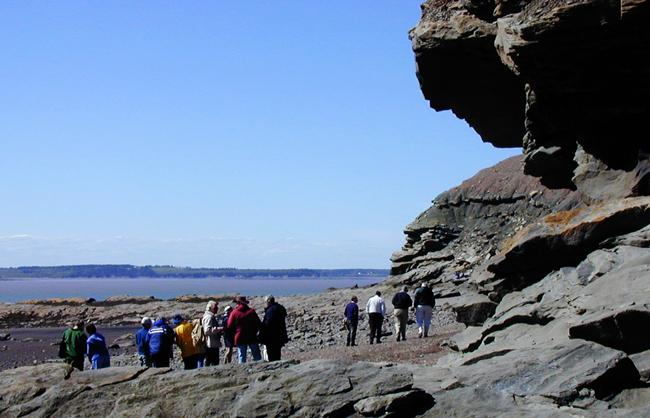 Walking on the beach at Joggins, Nova Scotia